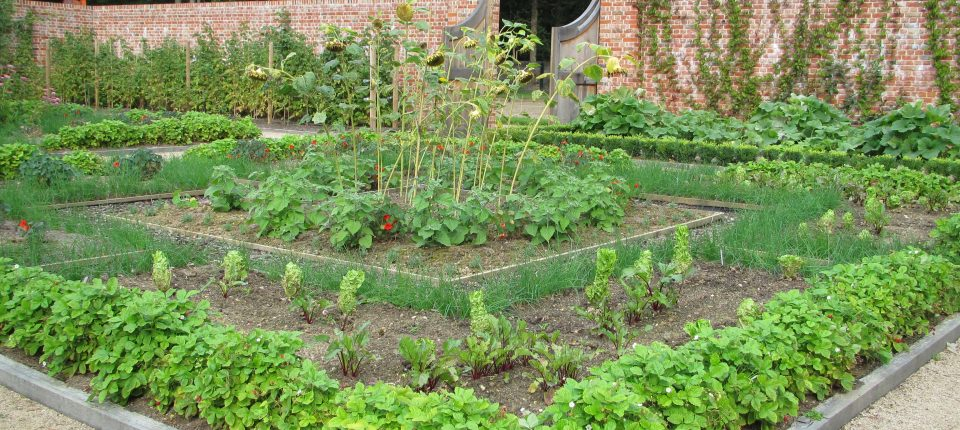 Welcome To The Fascinating World Of The Walled Kitchen Garden   Walled Kitchen  Gardens Network